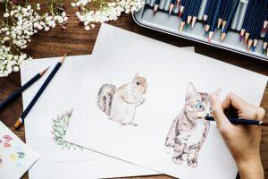 ardilla para dibujar
